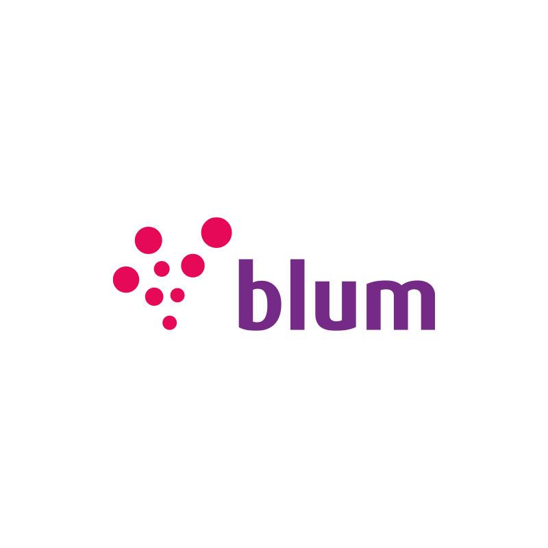 branding blum cosmeticos6